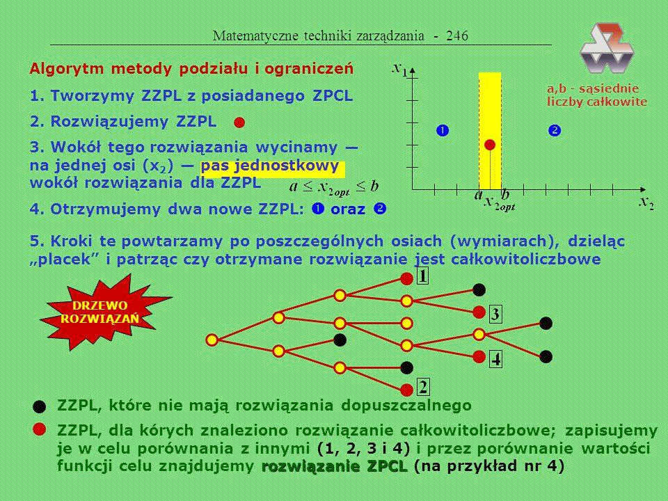   Matematyczne techniki zarządzania - 246