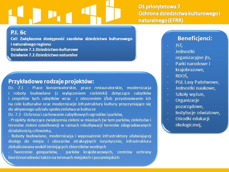 Przykładowe rodzaje projektów: