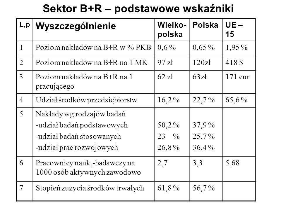 Sektor B+R – podstawowe wskaźniki