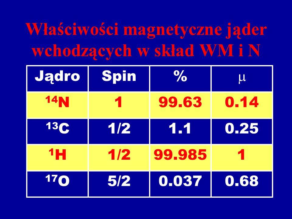 Właściwości magnetyczne jąder wchodzących w skład WM i N