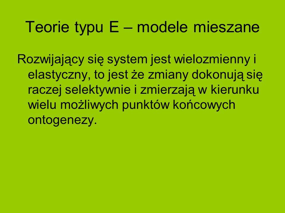 Teorie typu E – modele mieszane
