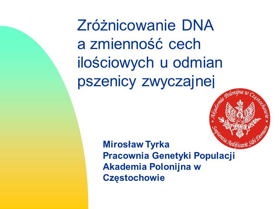 3/26/2017 Zróżnicowanie DNA a zmienność cech ilościowych u odmian pszenicy zwyczajnej. Mirosław Tyrka.