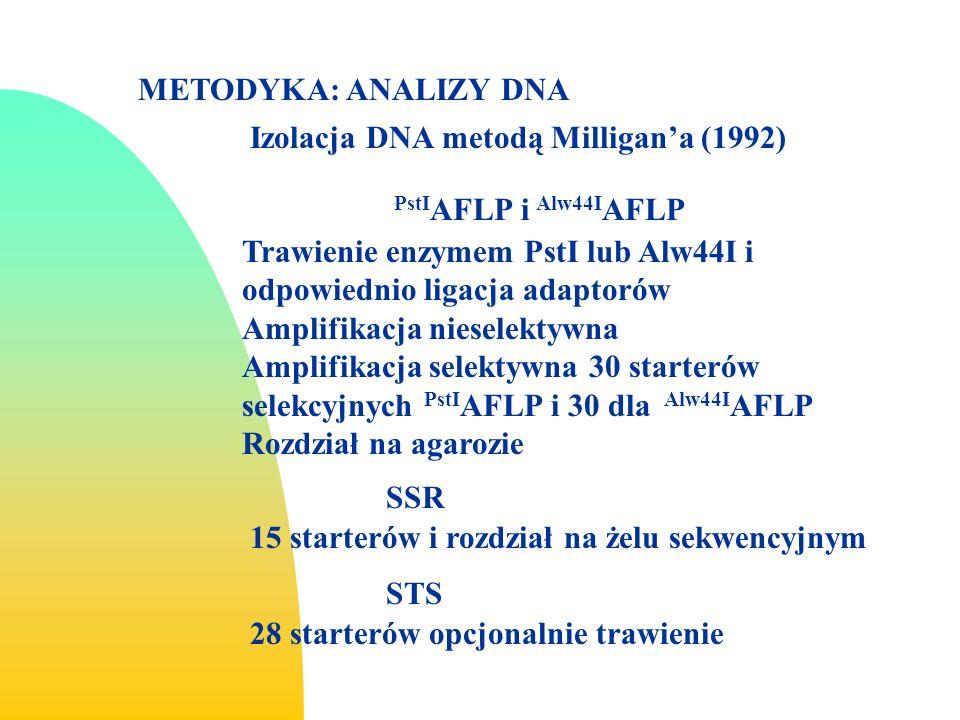 METODYKA: ANALIZY DNA Izolacja DNA metodą Milligan'a (1992) PstIAFLP i Alw44IAFLP.