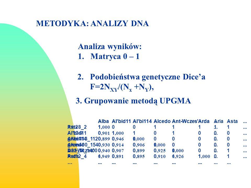 Podobieństwa genetyczne Dice'a F=2NXY/(Nx +NY),