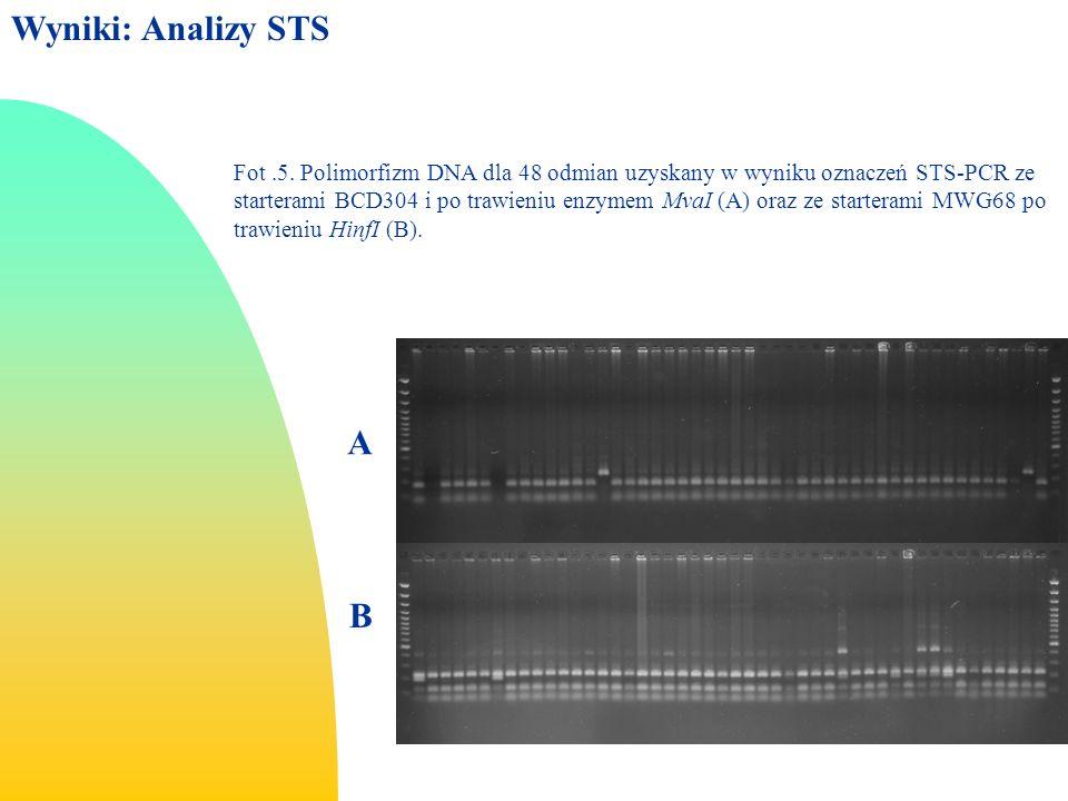 Wyniki: Analizy STS