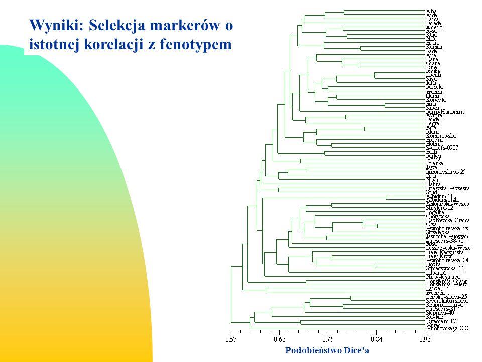 Wyniki: Selekcja markerów o istotnej korelacji z fenotypem