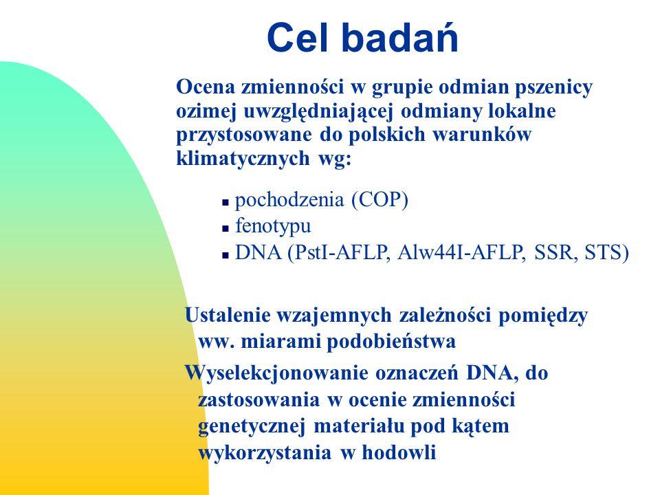 Cel badań Ocena zmienności w grupie odmian pszenicy ozimej uwzględniającej odmiany lokalne przystosowane do polskich warunków klimatycznych wg: