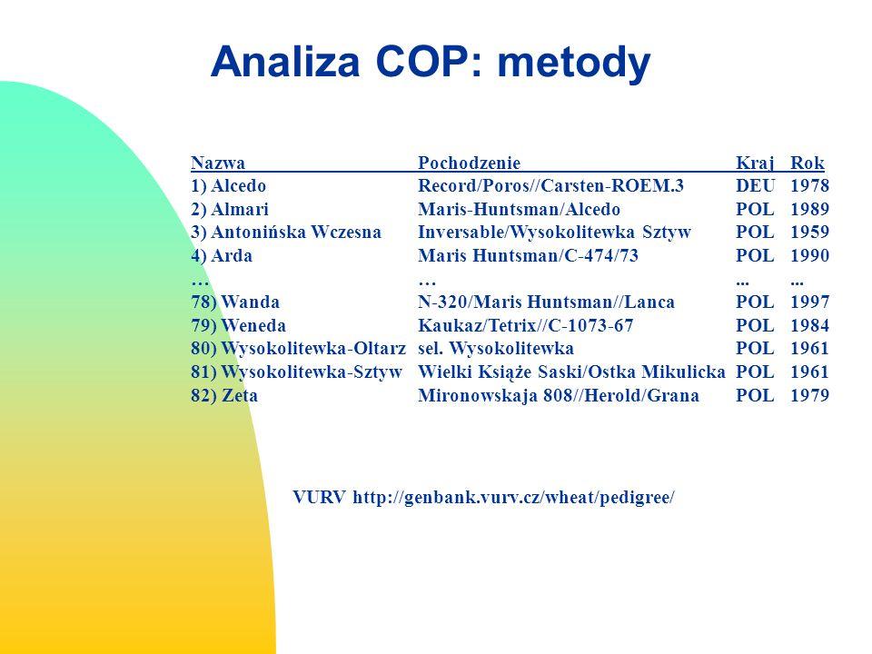 Analiza COP: metody Nazwa Pochodzenie Kraj Rok