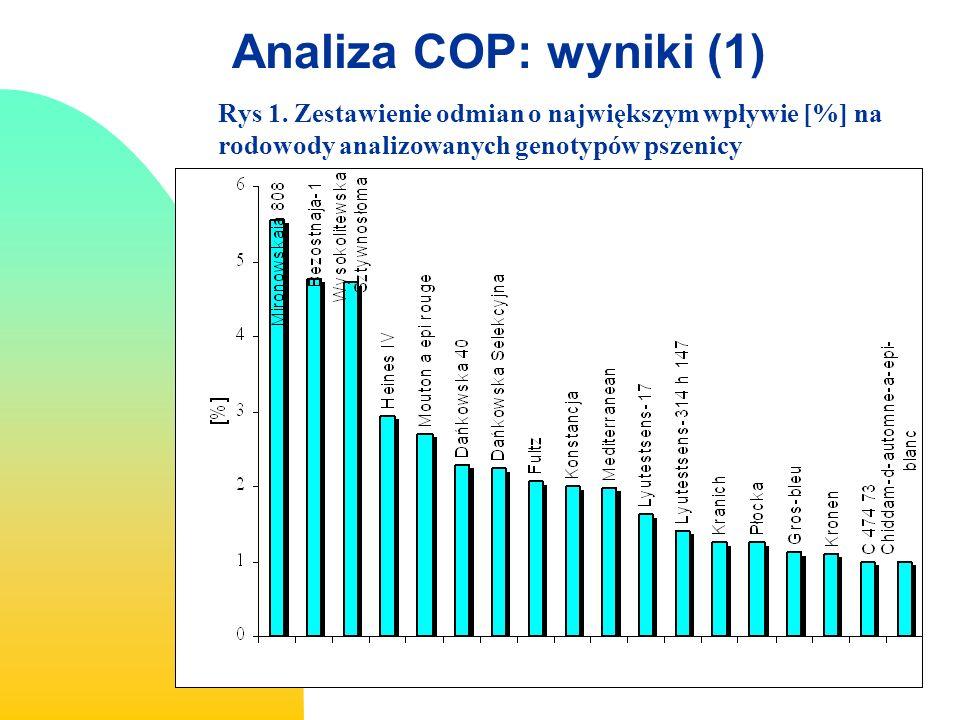 Analiza COP: wyniki (1) Rys 1.