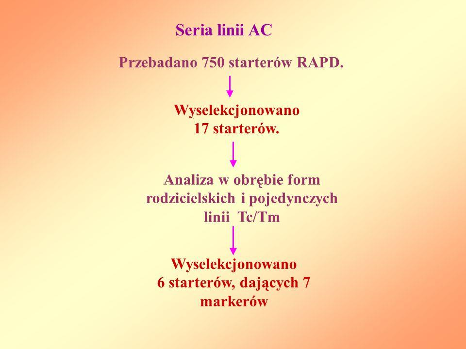 Seria linii AC Przebadano 750 starterów RAPD.