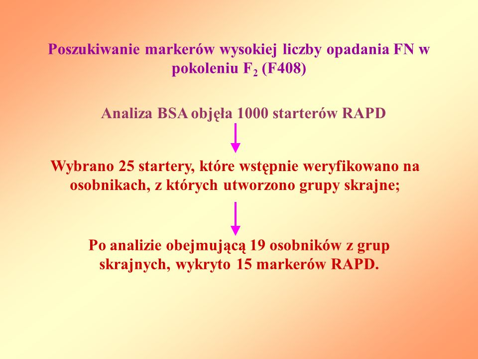 Poszukiwanie markerów wysokiej liczby opadania FN w pokoleniu F2 (F408)