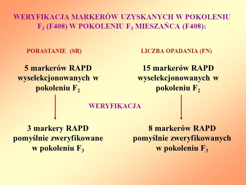 5 markerów RAPD wyselekcjonowanych w pokoleniu F2