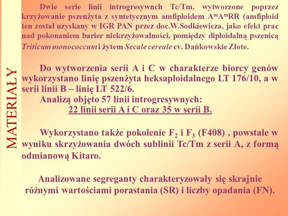 Dwie serie linii introgresywnch Tc/Tm, wytworzone poprzez krzyżowanie pszenżyta z syntetycznym amfiploidem AmAmRR (amfiploid ten został uzyskany w IGR PAN przez doc.W.Sodkiewicza, jako efekt prac nad pokonaniem barier niekrzyżowalności, pomiędzy diploidalną pszenicą Triticum monococcum i żytem Secale cereale cv. Dańkowskie Złote.