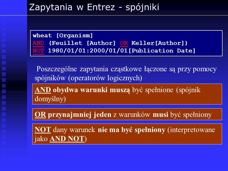 Zapytania w Entrez - spójniki