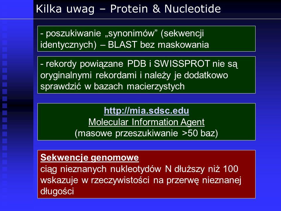 Kilka uwag – Protein & Nucleotide