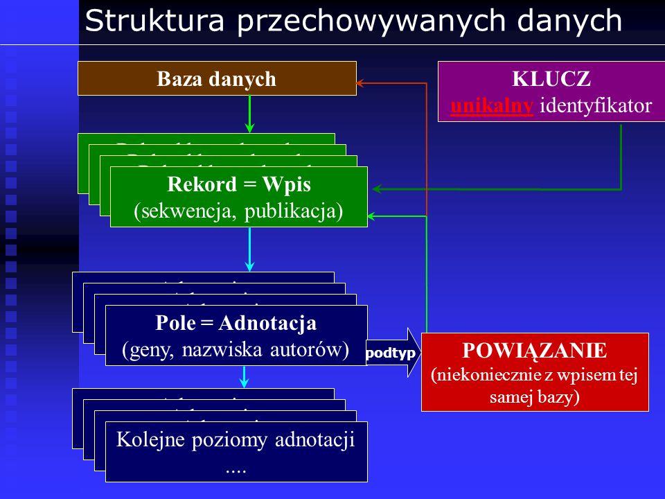 Struktura przechowywanych danych
