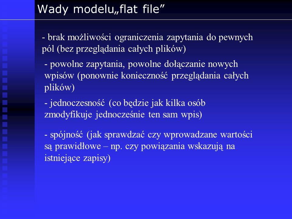 """Wady modelu""""flat file"""