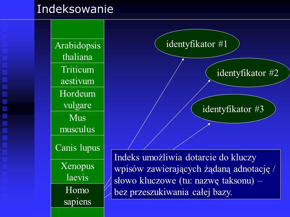 Indeksowanie identyfikator #1 Arabidopsis thaliana Triticum aestivum
