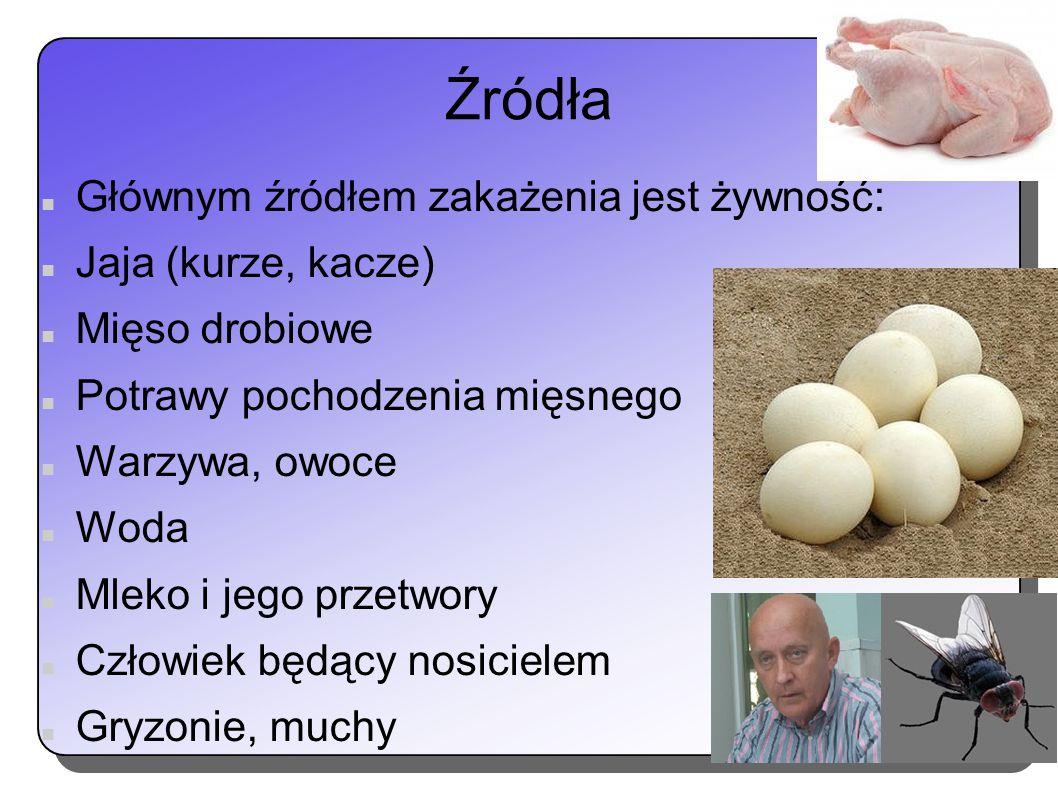 Źródła Głównym źródłem zakażenia jest żywność: Jaja (kurze, kacze)