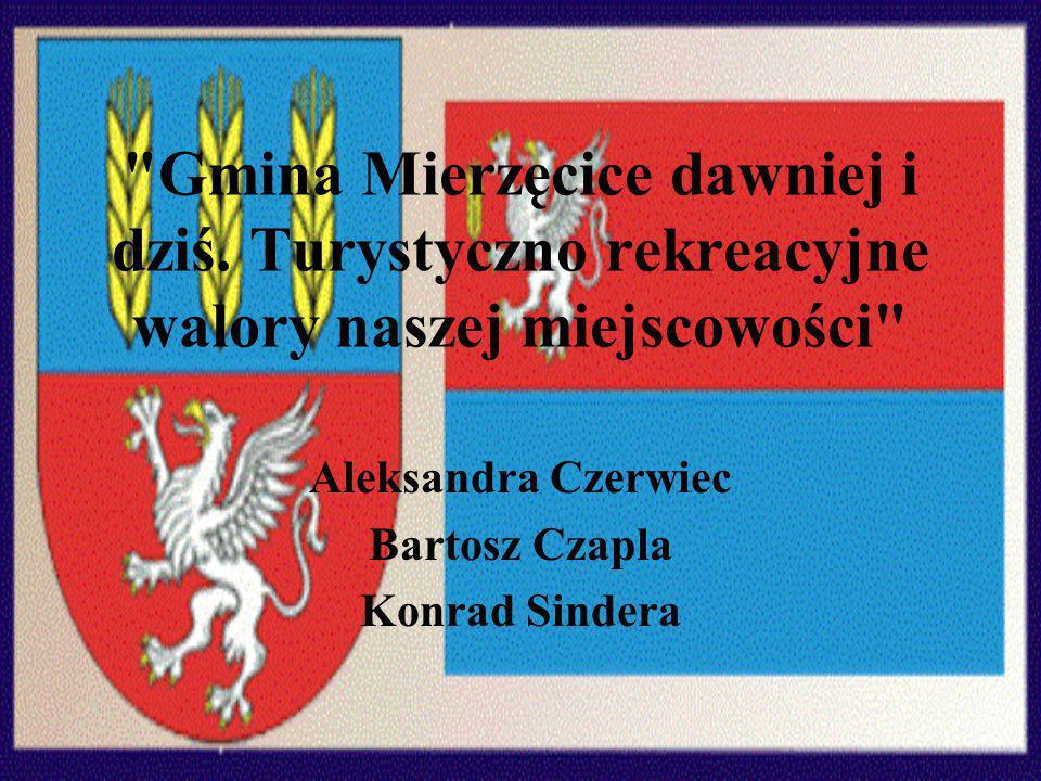 Aleksandra Czerwiec Bartosz Czapla Konrad Sindera