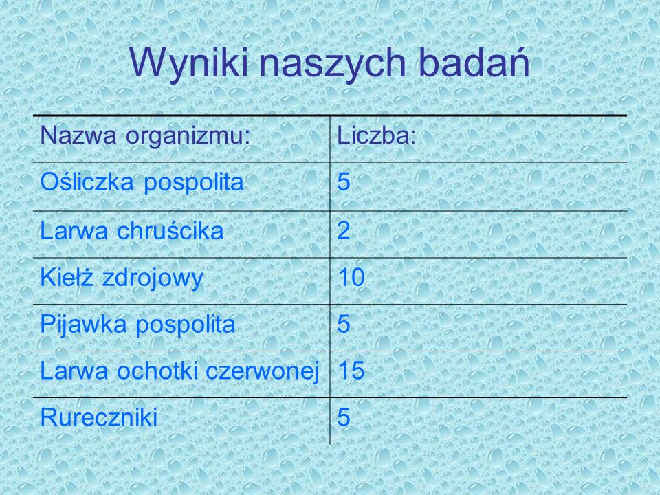 Wyniki naszych badań Nazwa organizmu: Liczba: Ośliczka pospolita 5