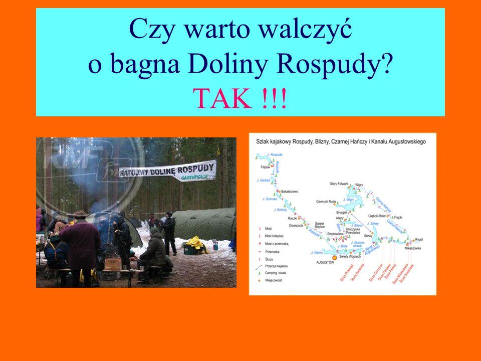 Czy warto walczyć o bagna Doliny Rospudy TAK !!!