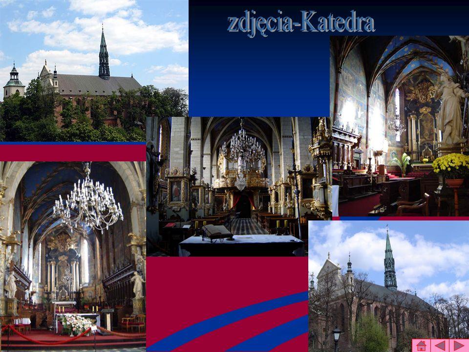 zdjęcia-Katedra