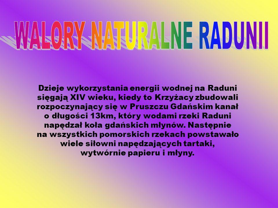 WALORY NATURALNE RADUNII