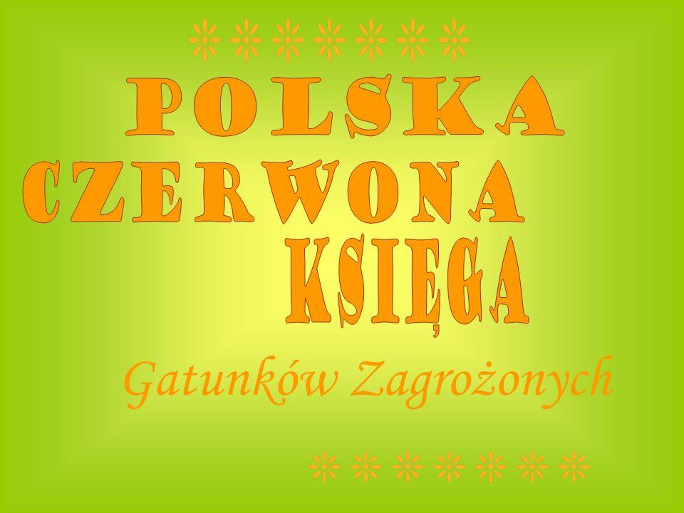 Polska Czerwona ksiega , Gatunków Zagrożonych