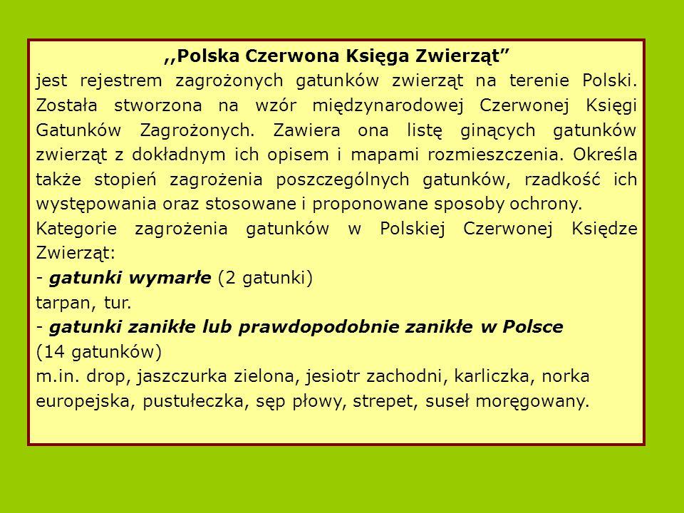 ,,Polska Czerwona Księga Zwierząt