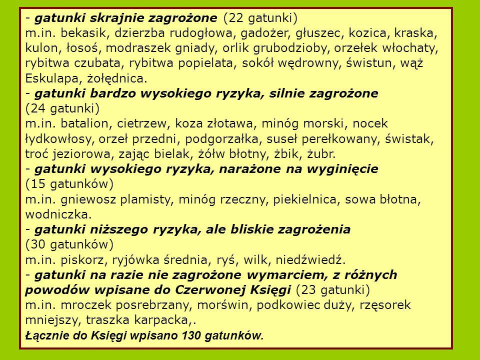 - gatunki skrajnie zagrożone (22 gatunki)