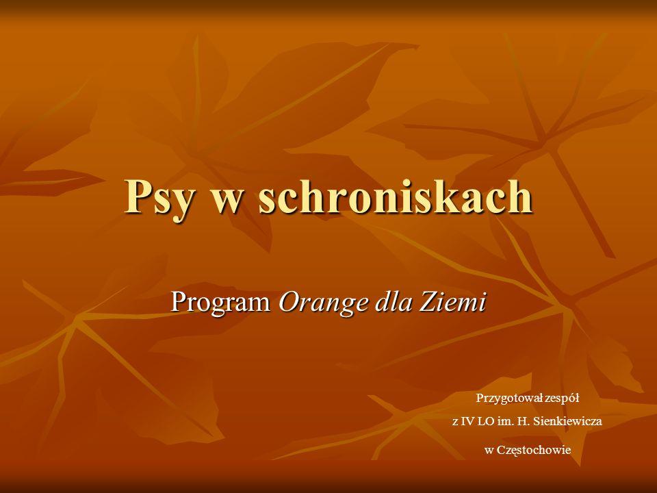 Program Orange dla Ziemi