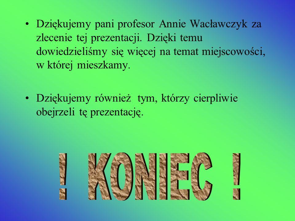 Dziękujemy pani profesor Annie Wacławczyk za zlecenie tej prezentacji