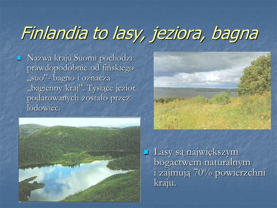 Finlandia to lasy, jeziora, bagna