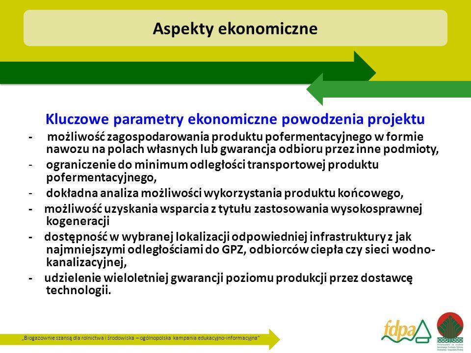Kluczowe parametry ekonomiczne powodzenia projektu