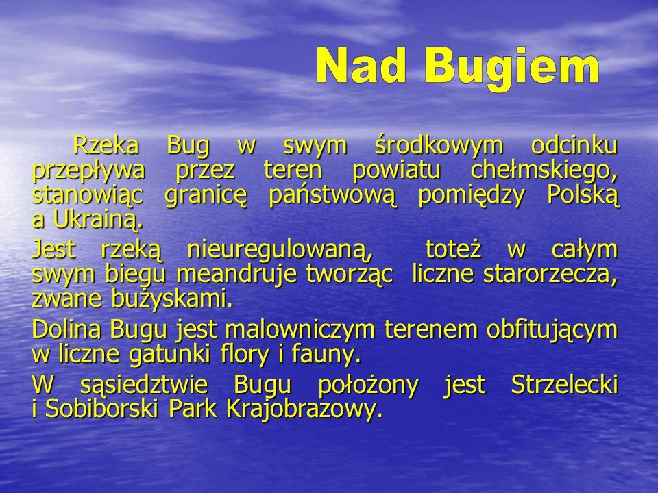 Nad BugiemRzeka Bug w swym środkowym odcinku przepływa przez teren powiatu chełmskiego, stanowiąc granicę państwową pomiędzy Polską a Ukrainą.