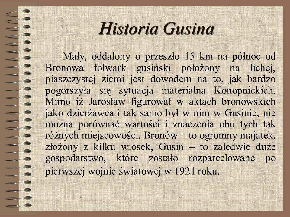 Historia Gusina