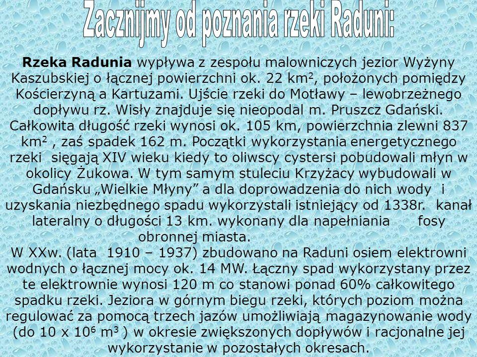 Zacznijmy od poznania rzeki Raduni: