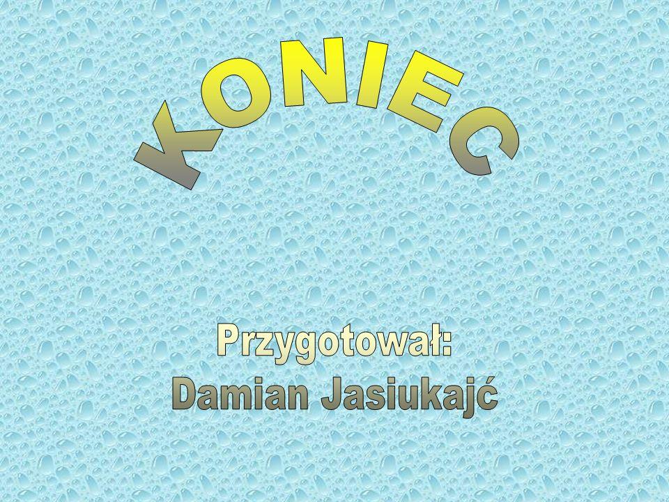 KONIEC Przygotował: Damian Jasiukajć