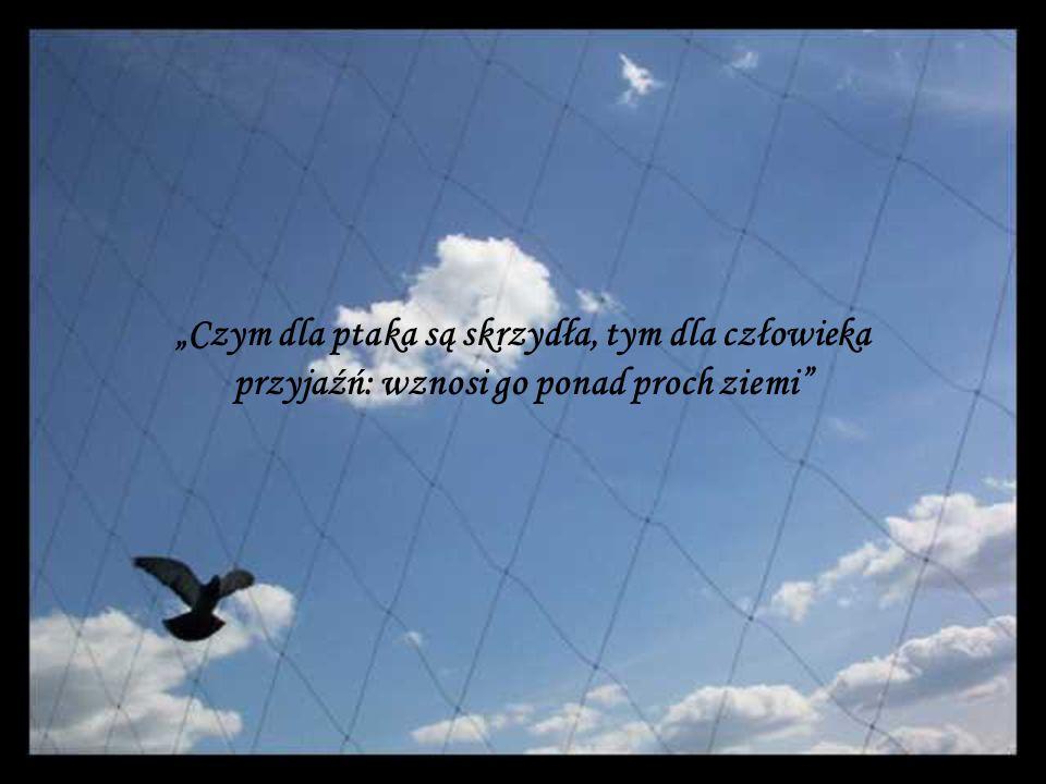 """""""Czym dla ptaka są skrzydła, tym dla człowieka przyjaźń: wznosi go ponad proch ziemi"""