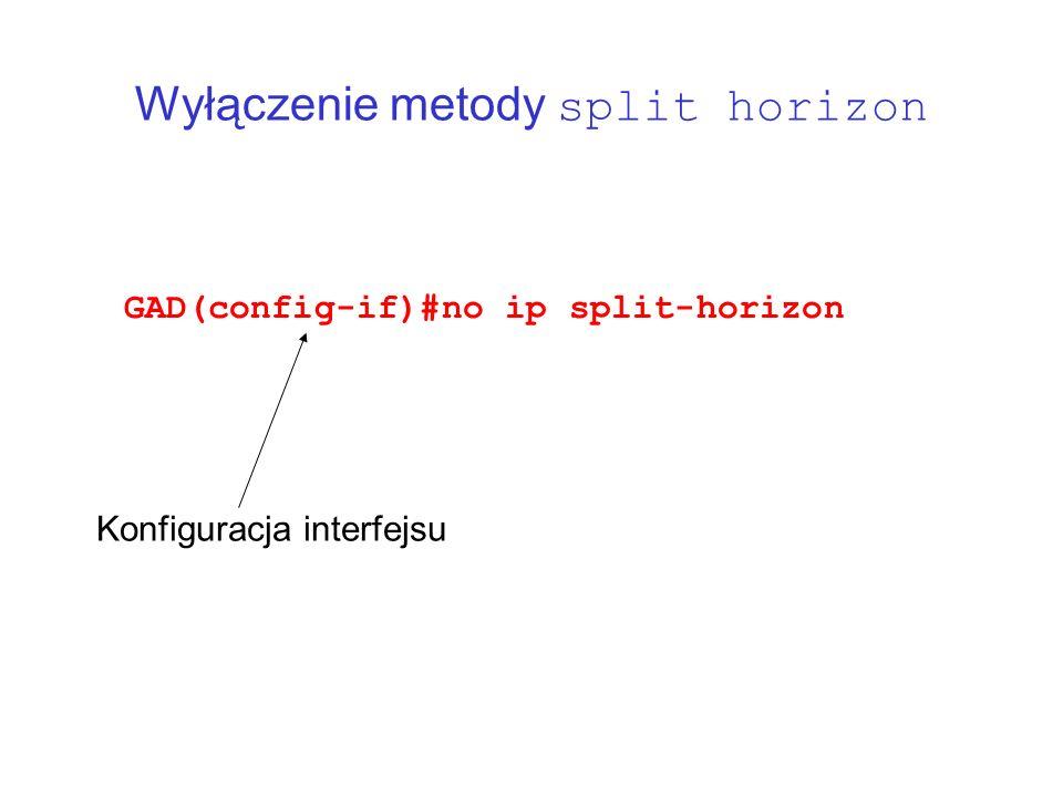 Wyłączenie metody split horizon