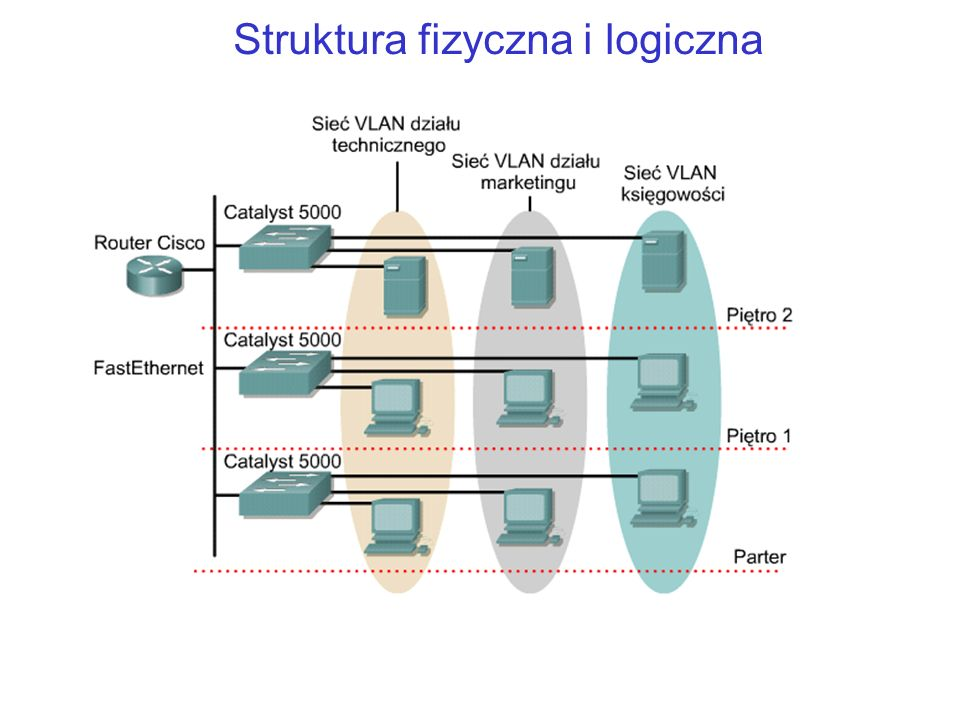 Struktura fizyczna i logiczna