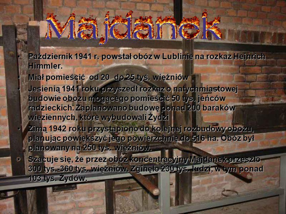 Październik 1941 r. powstał obóz w Lublinie na rozkaz Heinrich Himmler.
