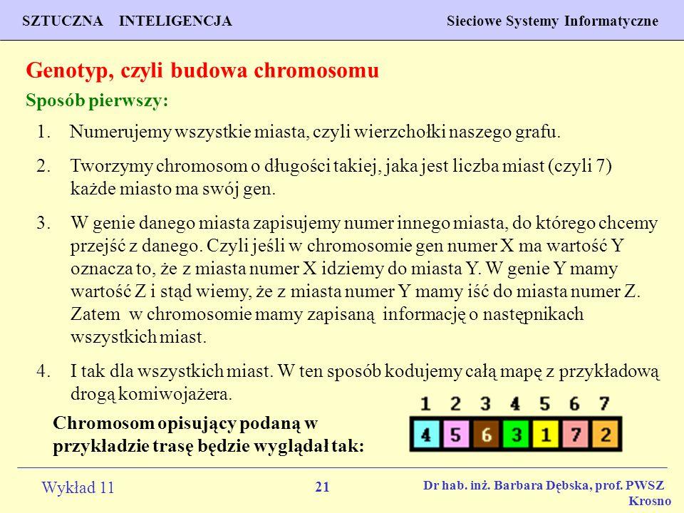 Genotyp, czyli budowa chromosomu