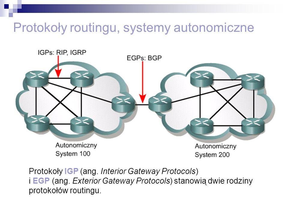 Protokoły routingu, systemy autonomiczne