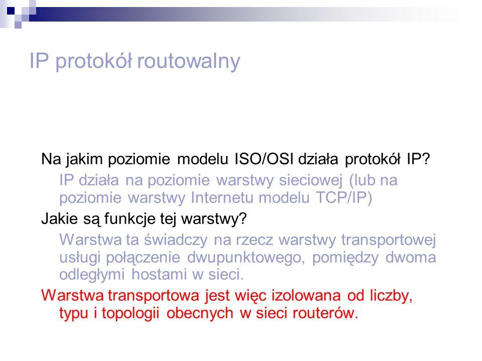 IP protokół routowalny