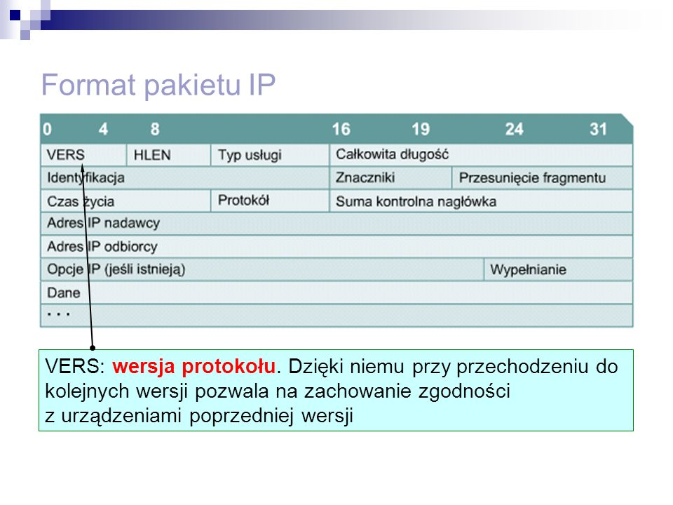 Format pakietu IP