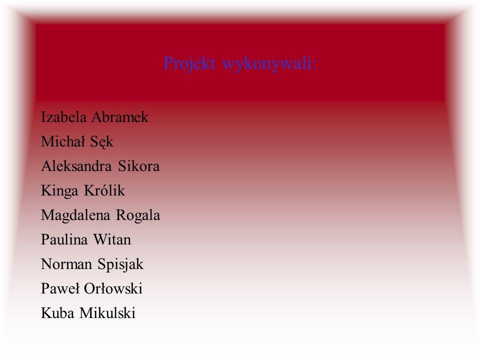 Projekt wykonywali: Izabela Abramek Michał Sęk Aleksandra Sikora