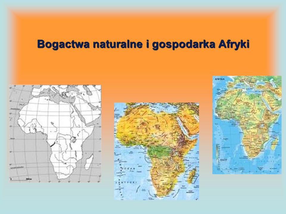 Bogactwa naturalne i gospodarka Afryki