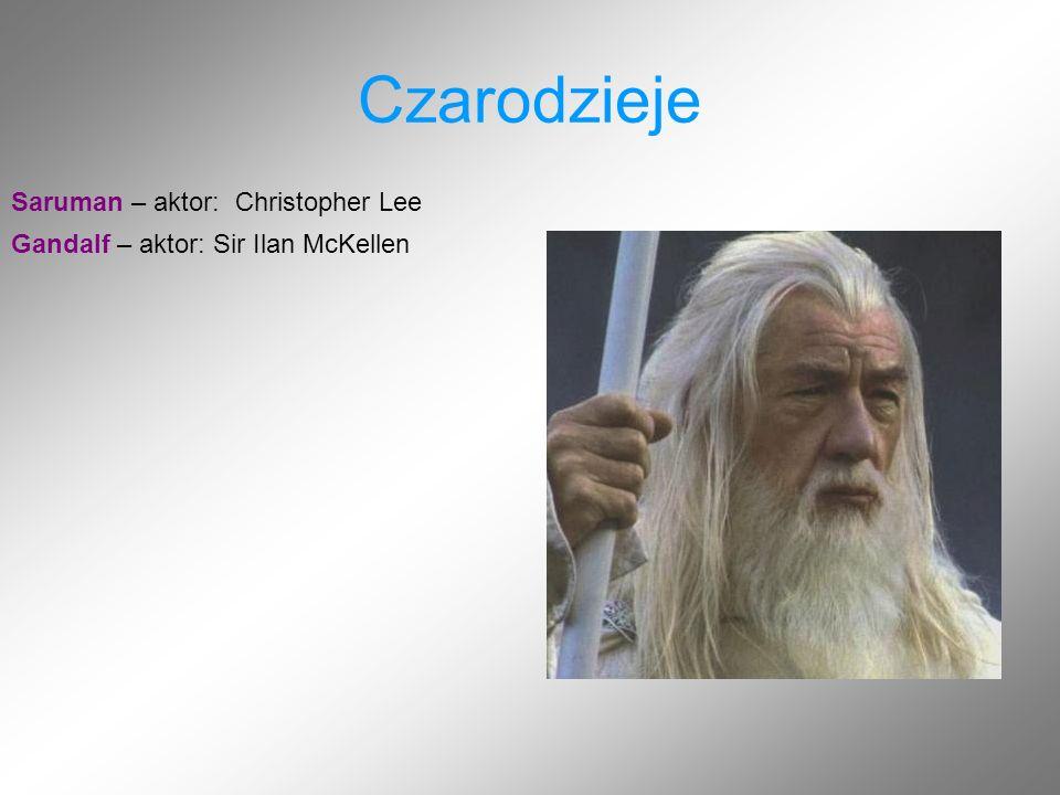 Czarodzieje Saruman – aktor: Christopher Lee